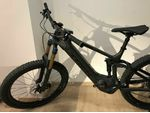 Trek Powerfly LT 9.9 Plus 2019 E-Bike